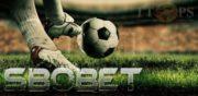 ต้องลอง!! เว็บแทงบอล sbobet เว็บไซต์พนันที่เป็นอันดับหนึ่งในดวงใจของใครหลายๆคน